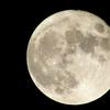 2月24日は「月光仮面登場の日」~鞍馬天狗を参考にした説!~