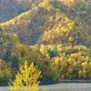 秋色のブリッツェン