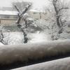 雪を楽しむ素直な心