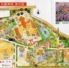 京都城南宮の神苑(11)