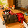 SIGMA 24-105mm f4 DG OS HSM Art の世界!!