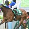【京都牝馬S(G3)2020予想‼】
