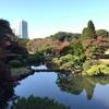 東京の紅葉の庭園①。新宿御苑、牧野記念庭園、ホテルニューオータニ日本庭園、清水谷公園