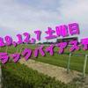 2019,12,7 土曜日 トラックバイアス予想 (中山競馬場、阪神競馬場、中京競馬場)