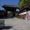 【神戸PR】相楽園では第64回神戸菊花展がやってます。2015年10月20日~11月23日まで