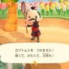 『あつまれ どうぶつの森』ゲーム内でカブトムシを獲り、私は遠い昔の夏休みに思いを馳せる