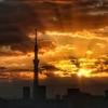 天気と空と:2019-11-11〜11-15