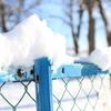 雪の日のカメラ散歩。