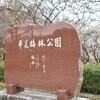 豊田市平芝公園 梅まつり