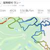 スキーオリ全日本選手権ミドル失格