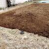 畑始めました。石ころだらけの畑で素人が畑やってみる。