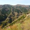 山桜のナメゴ谷展望とナメゴ谷の盟主・高塚山を訪ねる
