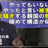 チャンネル桜の水島総氏、我那覇真子さんと韓国の慰安婦は同じ構造、と断言 ('Д')