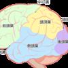 手術の説明①脳腫瘍?手術??え~??