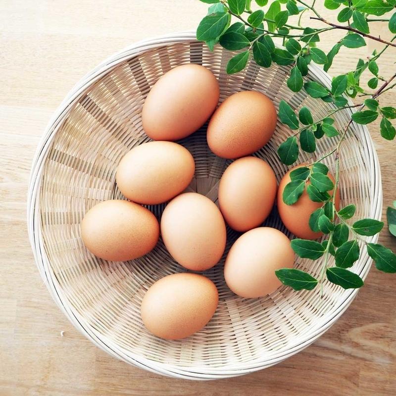 京都の絶品「平飼い卵3種」卵かけごはんにして比べてみた!