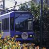 電車をこんなに沢山撮影したの初めてだ ~都電荒川線沿線散策~