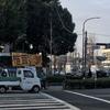 京都見物 京都大学~吉田神社~錦市場