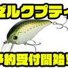 【EVERGREEN】清水盛三プロ監修のクランクベイトのダウンサイズモデル「ゼルクプティ」通販予約受付開始!