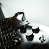 軽くて弾きやすいセミホロウ構造で人気の「CICADA」に新色登場!