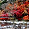 箒川渓谷の紅葉