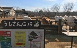 大人も子供も楽しい「成田ゆめ牧場」のアクセス・駐車場・料金など