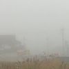 ロンドンの霧 VS 亀岡の霧