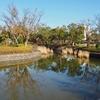 俣野公園の池(神奈川県横浜)