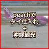 Peach (ピーチ) LCCでバンコク出張 + 沖縄も楽しめる ~ K-DAD タイで買い付け、ネット販売で約10年生計を立てている ひとり会社社長のお役立ち情報
