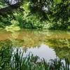 ちどり池(長野県松本)
