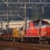 第1539列車 「 早朝のDD51牽引ロンチキ返空を狙う 」