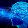 ドパミン神経系の解説〜統合失調症、錐体外路症状、パーキンソン病の基礎〜