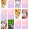 【可愛い猫のメモリーマッチパズル!】最新情報で攻略して遊びまくろう!【iOS・Android・リリース・攻略・リセマラ】新作スマホゲームが配信開始!