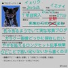 うしるきゅんから ◆ブロガーバトン◆