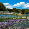 ズーラシア隣で開催中の「里山ガーデンフェスタ」で大花壇を撮ってきました #EOSM6 #THETA360