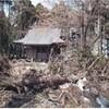神社修復プロジェクト