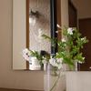 暑い毎日・・・ホワイトのルリマツリをシンプルなガラスベースに活けて玄関に♪