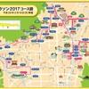 プレイバック 京都マラソン2017 レース前半戦