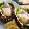 浜坂の岩牡蠣について 山陰の旬の味覚を解説