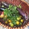 有機野菜&果物