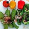 収穫したお野菜たち④
