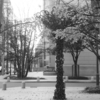 OLYMPUS-PEN FTと散歩