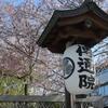 🌸通勤中に傳通院(伝通院)付近で主に桜を撮影しました!