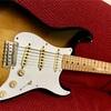 Fender Mexicoのギターを買った件