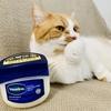 猫にも安心なワセリン。ハンドクリーム、ボディクリーム、ヘアオイルにも。