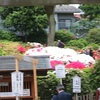 店が忙しいのに、文京区のつつじ祭りに行くよ。