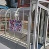 魚道楽 / 札幌市中央区南3条東2丁目 プレサント B1F