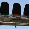 信号にスズメの巣…とF35戦闘機