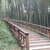 全羅南道、潭陽(タミャン):竹緑苑で竹林浴。