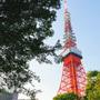 【東京街歩き】東京に住んで13年目にして東京観光をすることに。東京タワーからスタート!