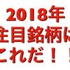 【 zaifトークン1円】2018年注目の銘柄はこれだ‼️多額の資金が流れる先は⁉️楽しいザイファーの仲間入りしない?